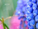 Holidays - Easter - Happy Easter
