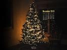 Holidays - Christmas - Merry Christmas - Christmas Tree