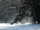 Seasons - Winter Paradise