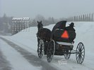 Seasons - Winter - Mennonite on horse and buggy in snow storm