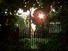 In the gardens of my ancestors