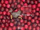 Holidays -  Happy Thanksgiving