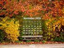 Seasons - Fall - Park Bench in Autumn