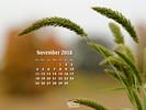 Seasons - Fall - Weed - Beauty im Simplicity