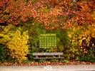 Seasons - Fall Colors - Park Bench in Autumn