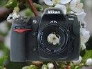 Nikon D300 - Front