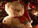 Santa Teddy - Merry Christmas