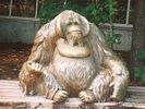 Gorilla Statue in Toronto Zoo