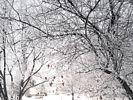Winter in British Columbia, Canada