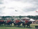 RCMP Musical Ride, Whitehorse